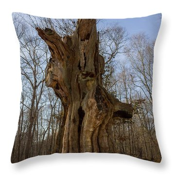 The Ledyard Oak Throw Pillow