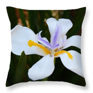 The Legacy African Iris Throw Pillow by Warren Thompson
