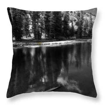 The Lengths That I Would Go To Throw Pillow by Laurie Search