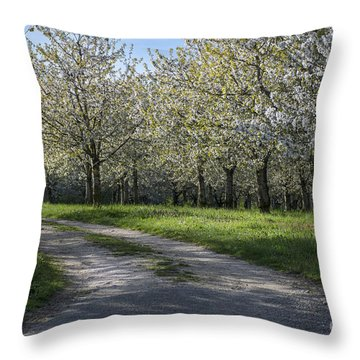 The Life Awakes 1 Throw Pillow by Bruno Santoro