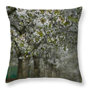 The Life Awakes 10 Throw Pillow