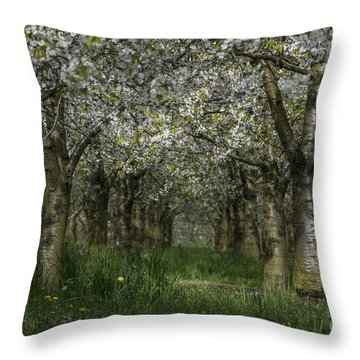 The Life Awakes 11 Throw Pillow by Bruno Santoro