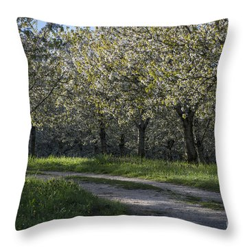 The Life Awakes 2 Throw Pillow by Bruno Santoro