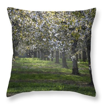 The Life Awakes 6 Throw Pillow by Bruno Santoro