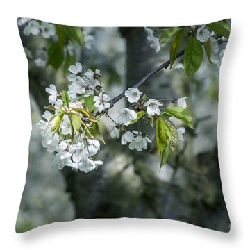 The Life Awakes 9 Throw Pillow by Bruno Santoro
