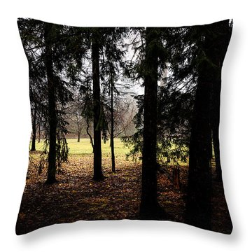 The Light After The Woods Throw Pillow