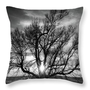 The Light Comes Through Throw Pillow by Monte Stevens