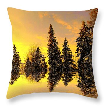 Throw Pillow featuring the photograph The Light by Elfriede Fulda