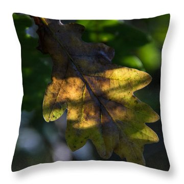 Throw Pillow featuring the photograph The Light Fell Softly by Odd Jeppesen