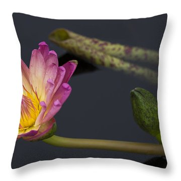 The Light From Within Throw Pillow