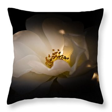 The Light Of Life Throw Pillow by Loriental Photography