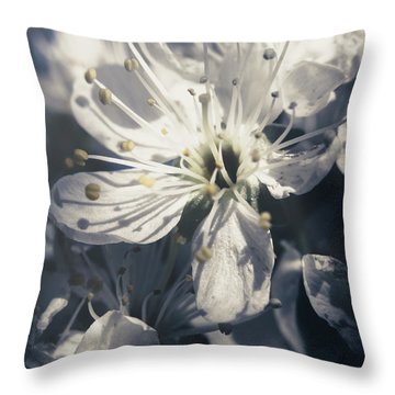 The Light Of Spring Petals Throw Pillow