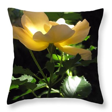 The Light Within 2 Throw Pillow