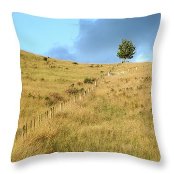 The Lines The Tree And The Hill Throw Pillow by Yoel Koskas