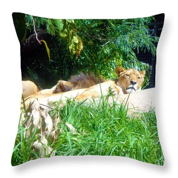 The Lion Awakes Throw Pillow
