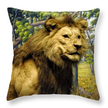 The Lion King Throw Pillow by Bill Cannon