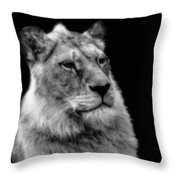 The Lioness Sitting Proud Throw Pillow
