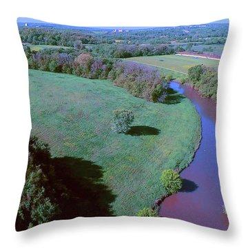 The Little Blue Throw Pillow by Dave Luebbert