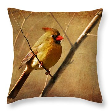 The Little Mrs. Throw Pillow