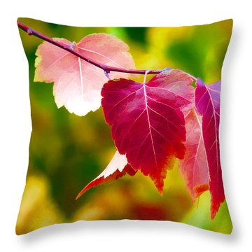 The Little Things That Bring So Much Joy Throw Pillow by James Steele