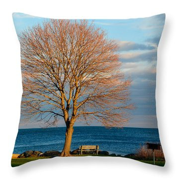 Throw Pillow featuring the photograph The Lone Maple Tree by Nancy De Flon