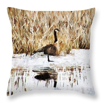 The Lone Traveler Throw Pillow