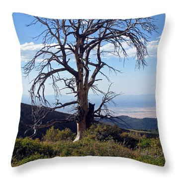 Throw Pillow featuring the photograph The Lone Tree by Juls Adams
