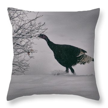 The Lone Turkey Throw Pillow