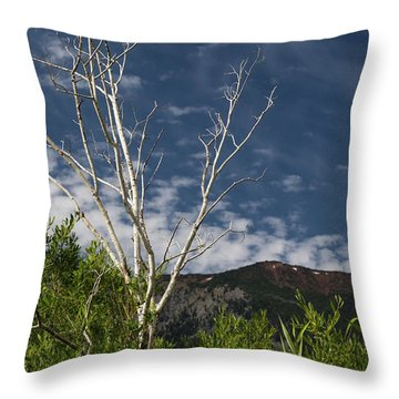 The Lonely Aspen  Throw Pillow