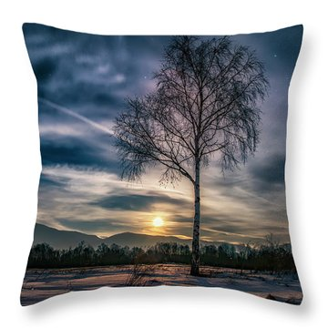 The Lonely Birch Throw Pillow