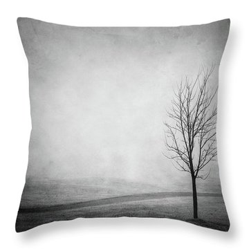 The Lonely Path Throw Pillow