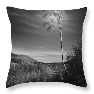 The Loner Throw Pillow by Dorit Fuhg