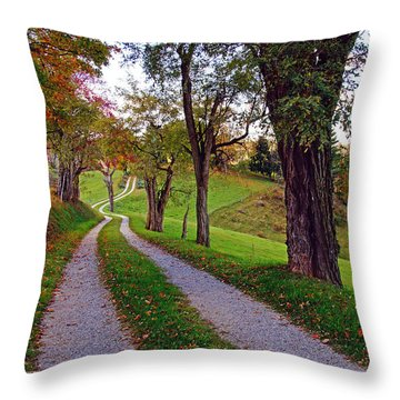 The Long Road In Autumn Throw Pillow