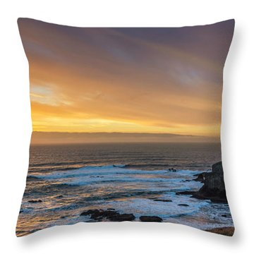 The Long View Throw Pillow by James Heckt