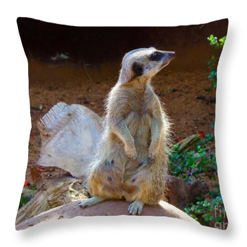 The Lookout - Meerkat Throw Pillow