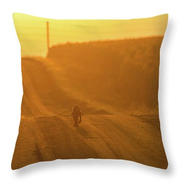 The Lost Puppy Throw Pillow