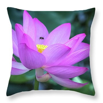 The Lotus And The Bee Throw Pillow