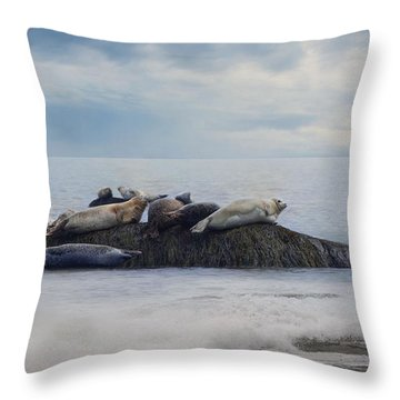 Throw Pillow featuring the photograph The Lounge In by Robin-Lee Vieira