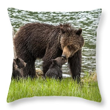 The Love Of Mama Bear Throw Pillow by Yeates Photography