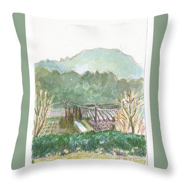 The Luberon Valley Throw Pillow