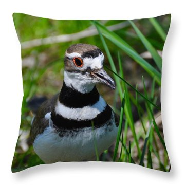 The Luminous Killdeer Throw Pillow
