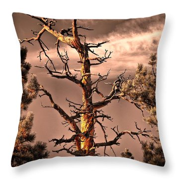 The Lurker II Throw Pillow by Charles Dobbs