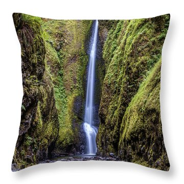 The Lush And Green Lower Oneonta Falls Throw Pillow