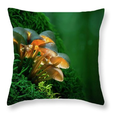 The Magic Lantern II Throw Pillow