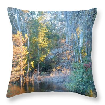 Throw Pillow featuring the photograph The Magic Of Autumn Sunshine by Kay Gilley