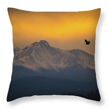 The Majestic Bald Eagle Throw Pillow