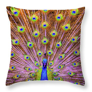 The Majestic Peacock Throw Pillow