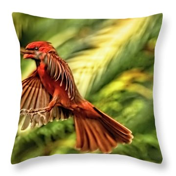 The Male Cardinal Approaches Throw Pillow