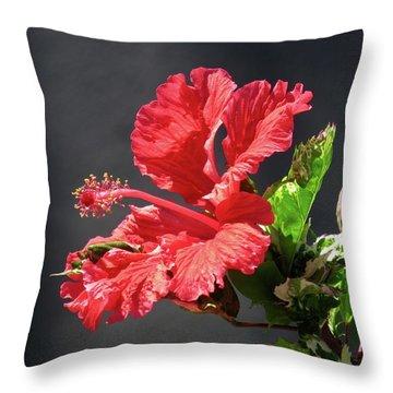 The Mallow Hibiscus Throw Pillow