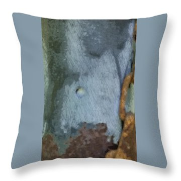The Man In The Mirror Throw Pillow by Kimberly  W
